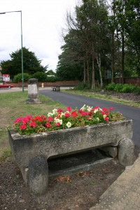 A Metropolitan Cattle Trough and Drinking Fountain Association trough now in use for floral displays.